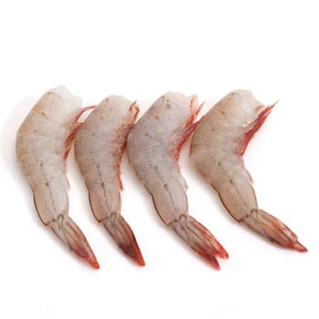 White Shrimp (Chaka) HLSO