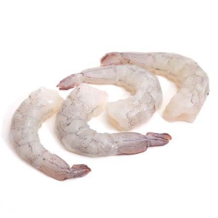 White Shrimp (Chaka) PUD